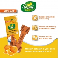 Snack Anjing Happi Doggy Dental Care Orange Gluten Free