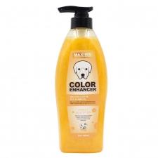Shampoo Anjing Maxima Golden Luster Colour Enhancer 600ml